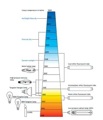 Lighting Colour Temperatures Explained Green Business Light